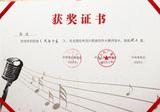 中国音协 中央电视台 CNR 全国优秀流行歌曲大赛荣誉
