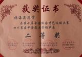 杨海英:第十届全国校园才艺选拔大赛二等奖